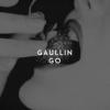 Gaullin Go