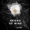 Avicii - Friend Of Mine